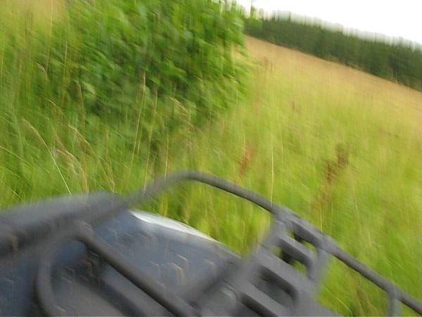 квадроциклы катание подмосковье выходных прокат фото190
