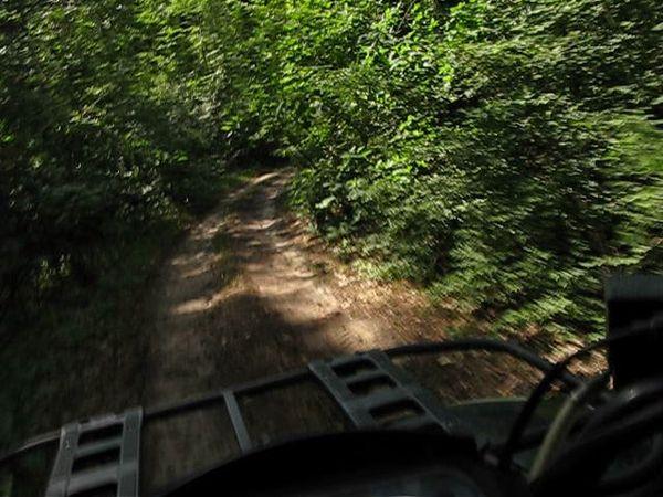 квадроциклы катание подмосковье выходных прокат фото202
