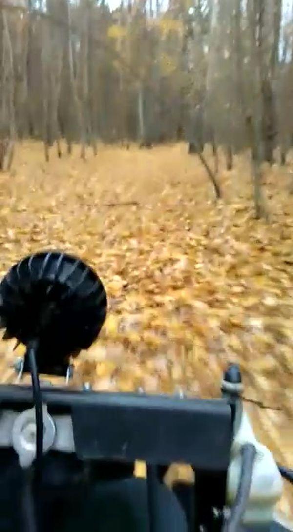 квадроциклы катание подмосковье выходных прокат фото280