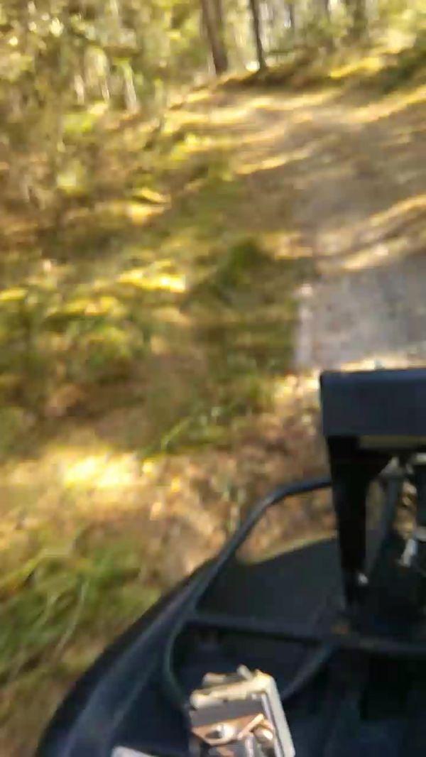квадроциклы катание подмосковье выходных прокат фото297