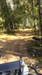 квадроциклы катание подмосковье выходных прокат фото300