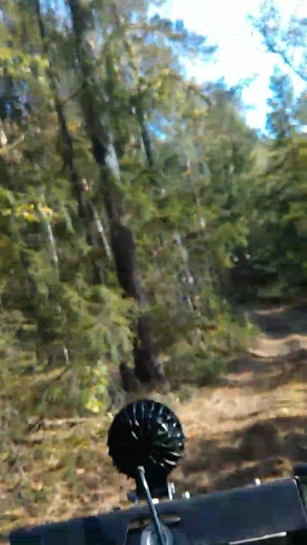 квадроциклы катание подмосковье выходных прокат фото302