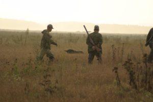 охота фазанов подмосковье фото №10