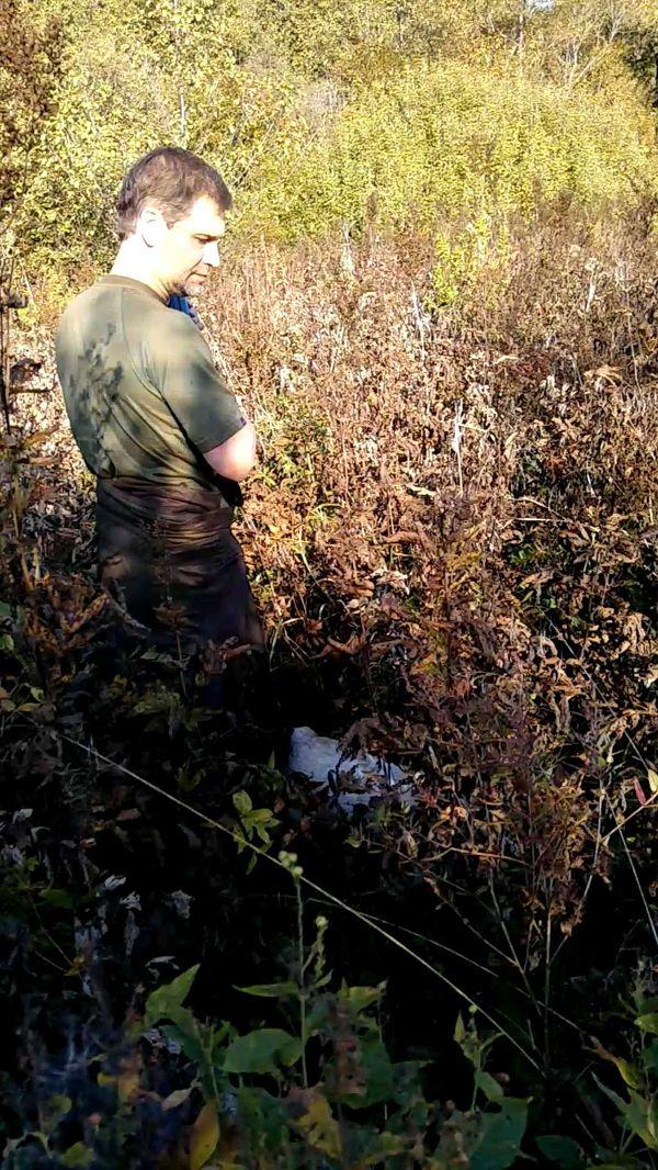 охота фазанов подмосковье фото №108