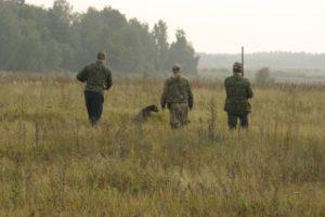 охота фазанов подмосковье фото №13