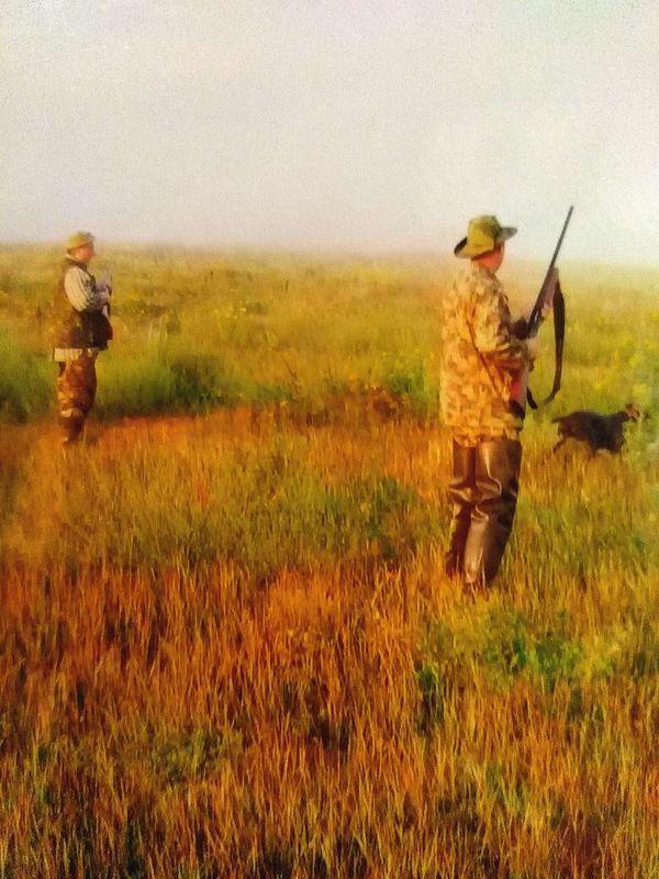охота фазанов подмосковье фото №143
