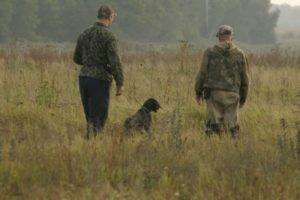 охота фазанов подмосковье фото №15