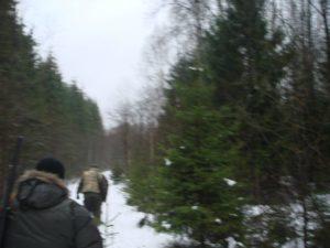 охота фазанов подмосковье фото №16
