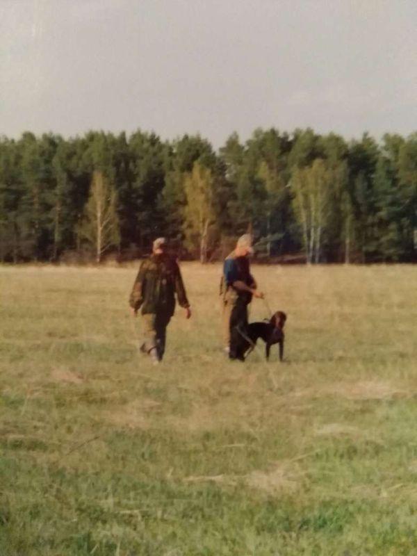 охота фазанов подмосковье фото №172
