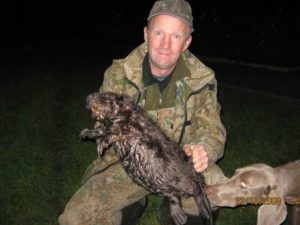 охота фазанов подмосковье фото №20