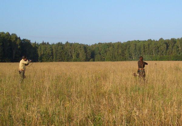 охота фазанов подмосковье фото №213