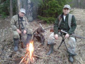 охота фазанов подмосковье фото №22
