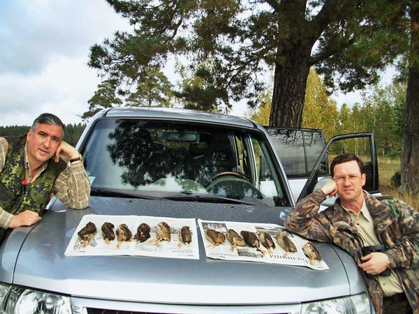 охота фазанов подмосковье фото №220