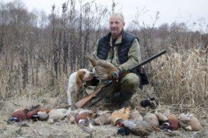 охота фазанов подмосковье фото №25