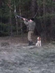 Охота на фазана в Подмосковье фото №281