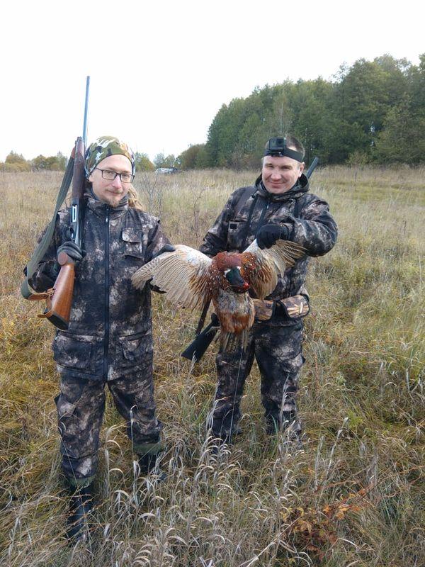 Охота на фазана в Подмосковье фото №289