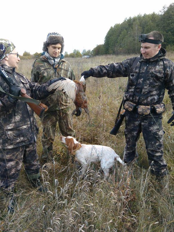 Охота на фазана в Подмосковье фото №290