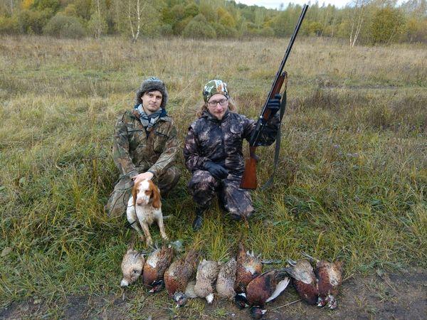 Охота на фазана в Подмосковье фото №292