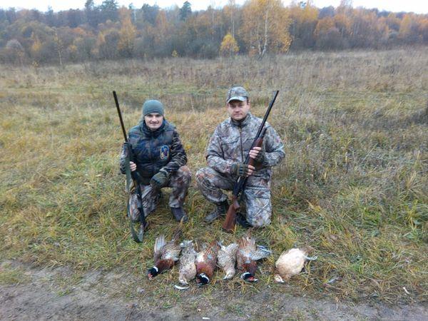 Охота на фазана в Подмосковье фото №299
