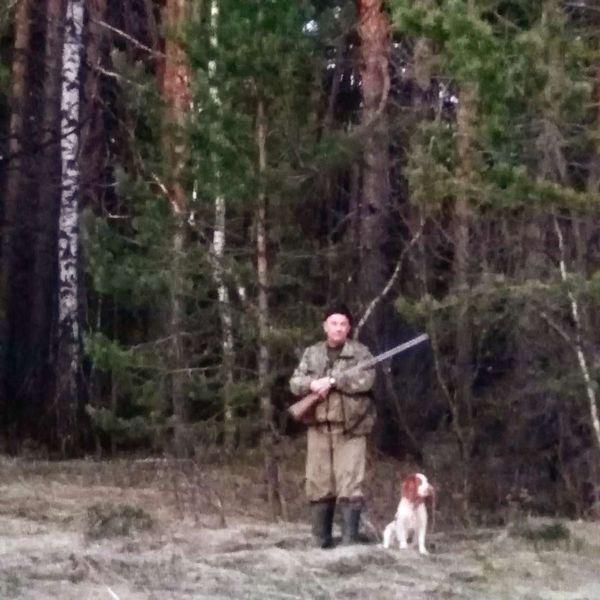 охота фазанов подмосковье фото №30
