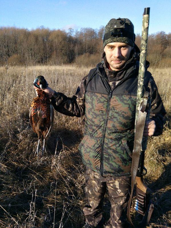 Охота на фазана в Подмосковье фото №309