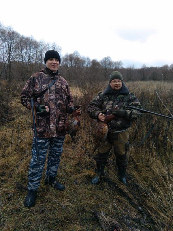 Охота на фазана в Подмосковье фото №310
