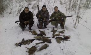 Охота на фазана в Подмосковье фото №347