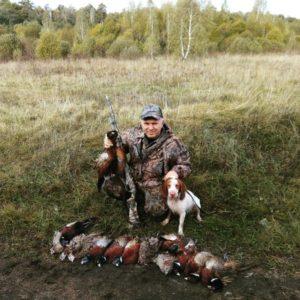 Охота на фазана в Подмосковье фото №361