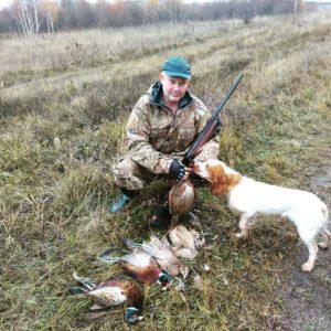 Охота на фазана в Подмосковье фото №372