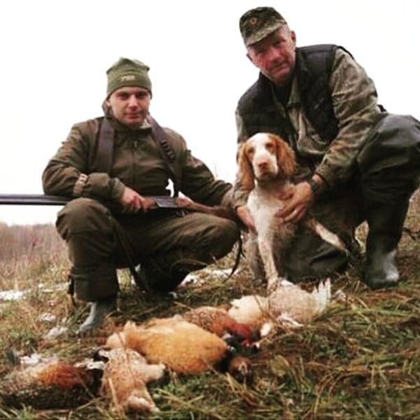 Охота на фазана в Подмосковье фото №386