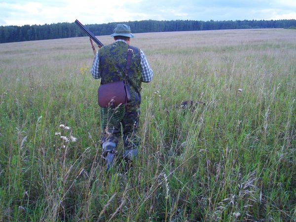 охота фазанов подмосковье фото №44