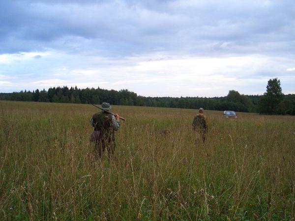 охота фазанов подмосковье фото №47