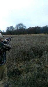 охота фазанов подмосковье фото №50