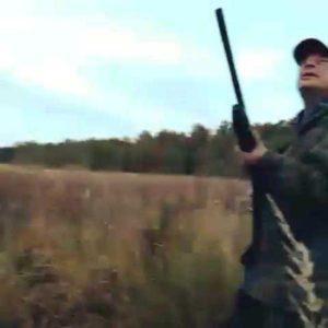 охота фазанов подмосковье фото №64