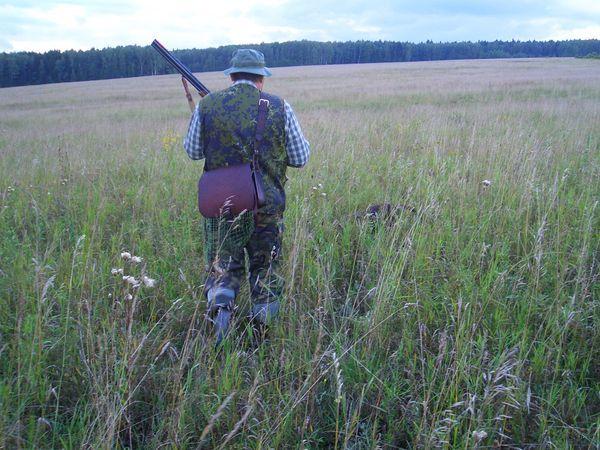 охота фазанов подмосковье фото №87