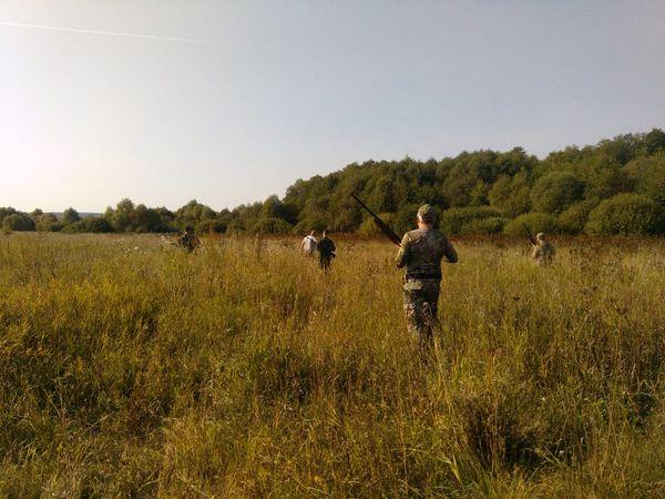 Охота на фазана в Подмосковье фото №430