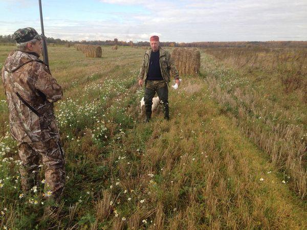 Охота на фазана в Подмосковье фото №453