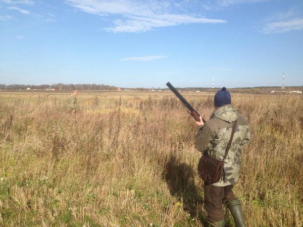 Охота на фазана в Подмосковье фото №468