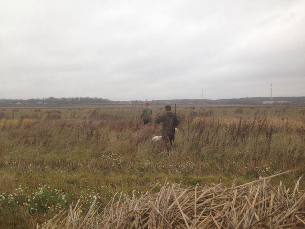 Охота на фазана в Подмосковье фото №487