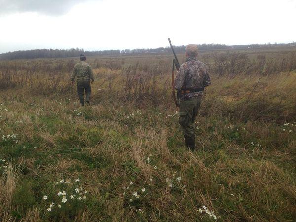 Охота на фазана в Подмосковье фото №488