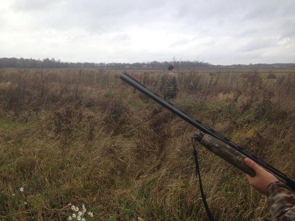 Охота на фазана в Подмосковье фото №490