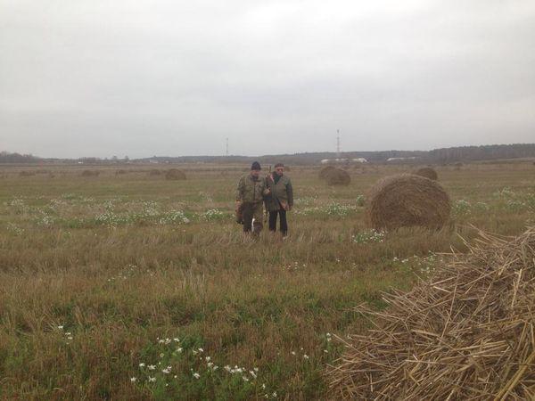 Охота на фазана в Подмосковье фото №505