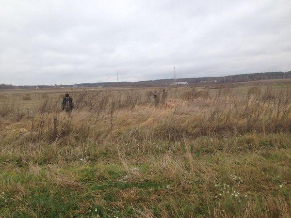 Охота на фазана в Подмосковье фото №514