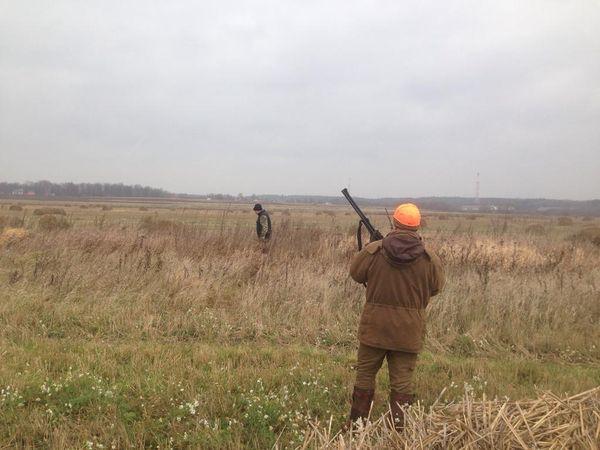 Охота на фазана в Подмосковье фото №519