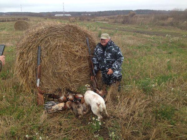 Охота на фазана в Подмосковье фото №534