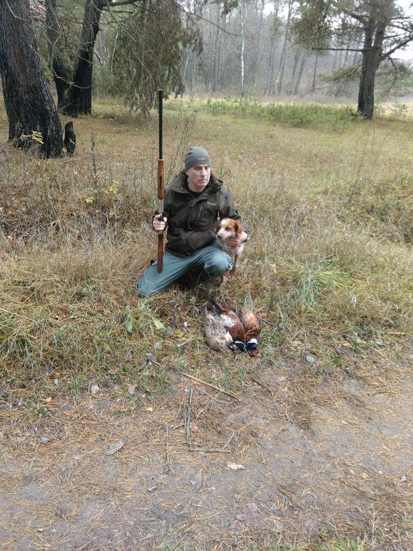 Охота на фазана в Подмосковье фото №541