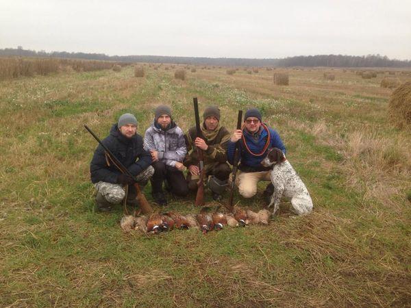 Охота на фазана в Подмосковье фото №545