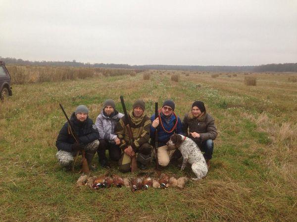 Охота на фазана в Подмосковье фото №548