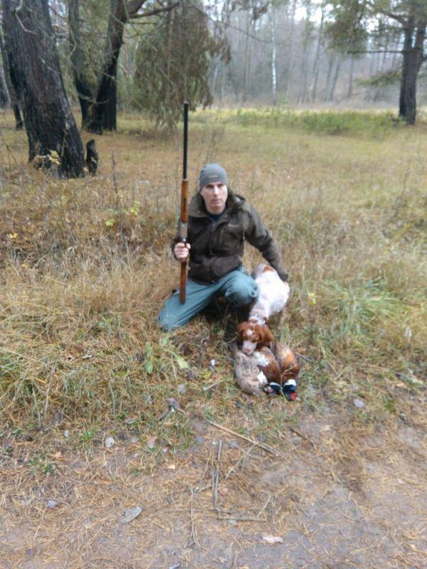 Охота на фазана в Подмосковье фото №550