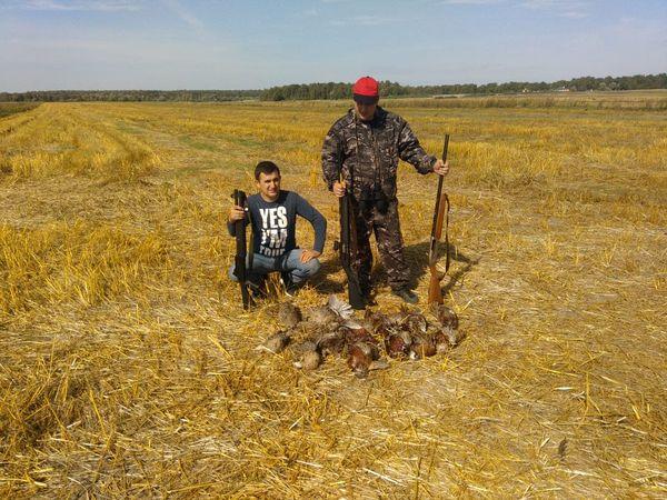 Охота на фазана в Подмосковье фото №555